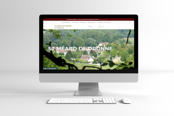Site Web institutionnel